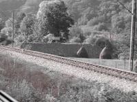 Mooie plaatjes vanuit de trein
