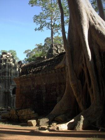 Foto's van Cambodja